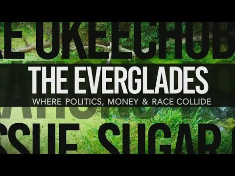 The Everglades: Where Money, Politics & Race Collide