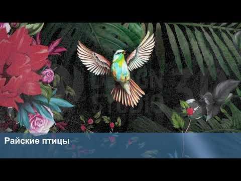 3D Фотообои «Райские птицы»