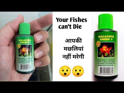 Malachite Green F Medicine For Fishes   Malachite Green F   Best Medicine For Fishes   How To Use