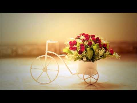 Romantic Ringtone | Ringtones for Android | Instrumental Ringtones