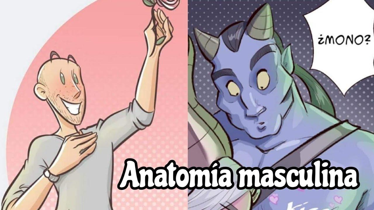 Dibujo de anatomía cartoon. Mis personajes masculinos - YouTube