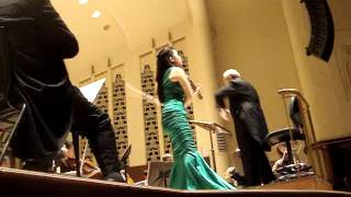 Sarah Chang plays the Brahms Violin Concerto in D Major Op. 77