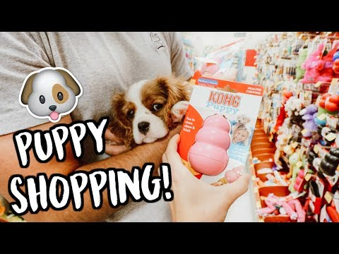 SHOPPING FOR OUR NEW PUPPY!!