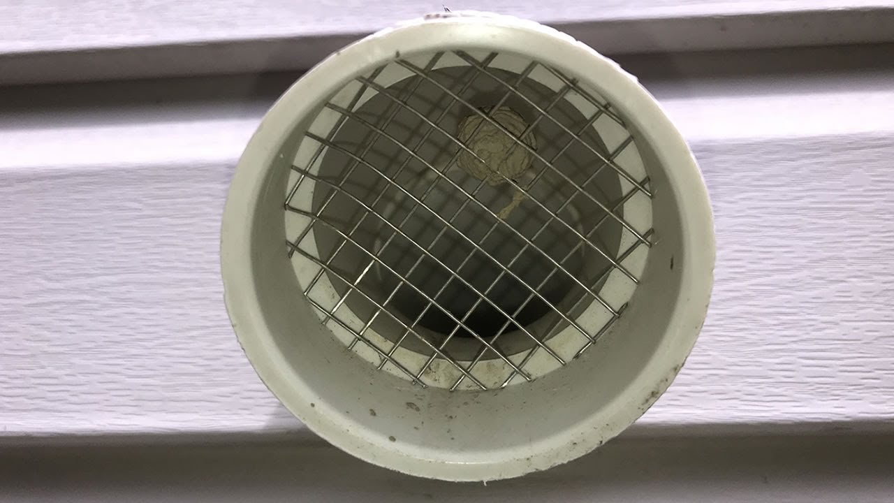 Wasp Nest Inside Of Furnace Vent Screen Youtube