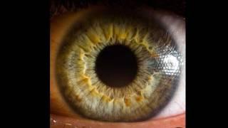 Human Eyes - EXTREME eye close-ups