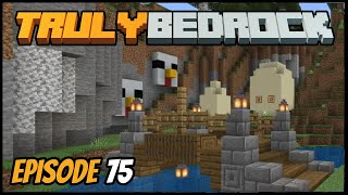 Auto Chicken Cooker & Truck Plans! - Truly Bedrock (Minecraft Survival Let's Play) Episode 75