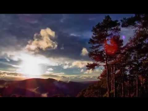 Слушать песню Пелагея - Мамина Босанова