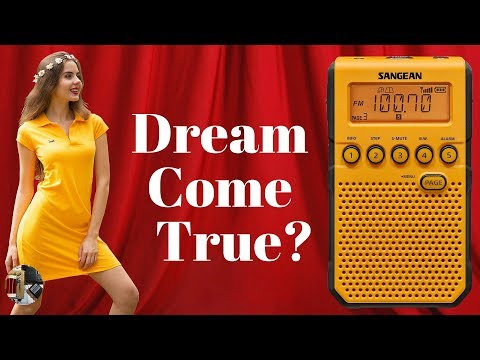 Sangean DT-800 AM FM Stereo Weather Alert Pocket Portable Radio Review
