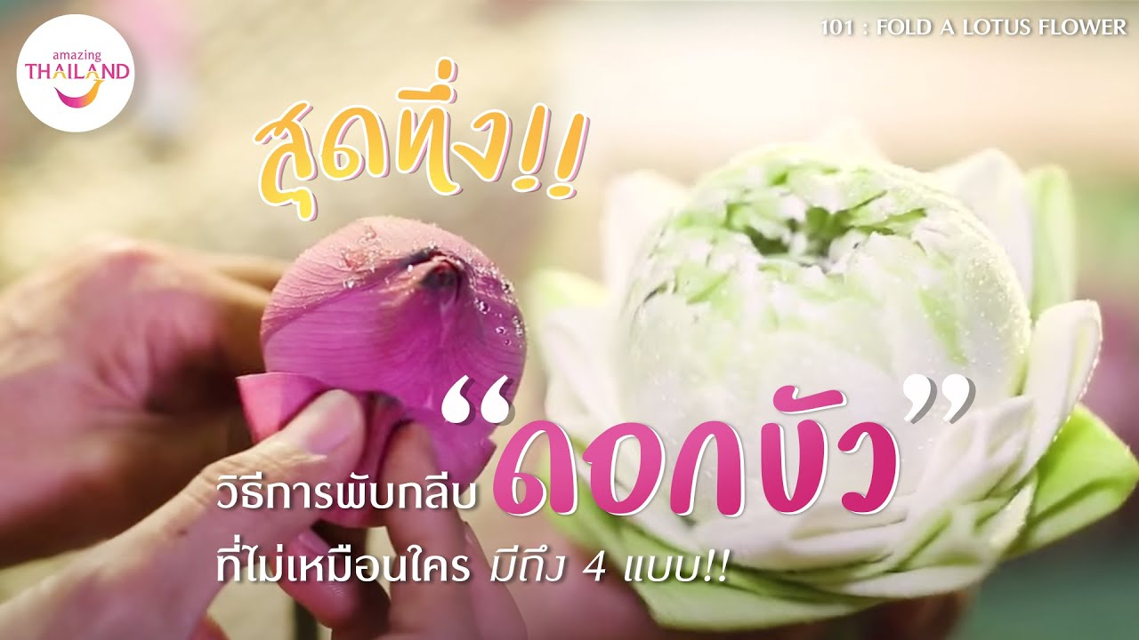 4 Ways To Fold A Lotus Flower Youtube