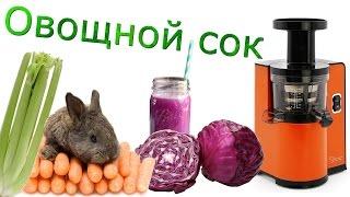 Овощной сок(капуста, морковь, сельдерей)  с помощью Sana-808 и тест на КПД