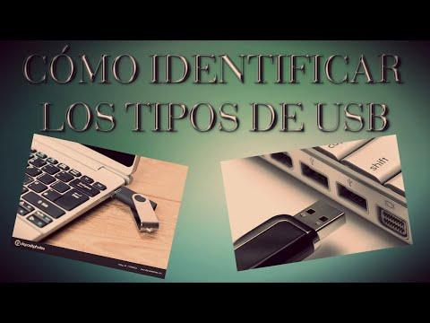 CÓMO IDENTIFICAR LOS TIPOS DE USB?