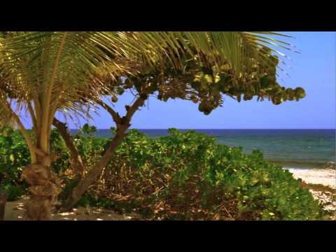 Tropical House -Tax Free - Cayman Brac - Cayman Islands (HD)