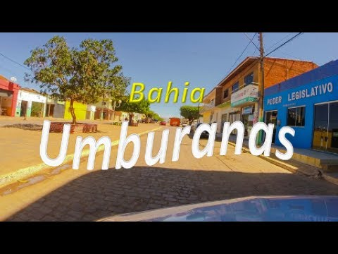 Umburanas Bahia fonte: i.ytimg.com