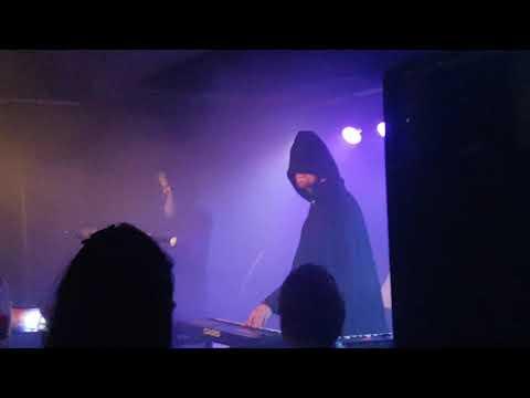Nortfalke Live 12.1.2019 at Willemeen/Arnhem