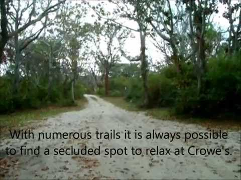 In My Footsteps: Cape Cod - Crowes Pasture