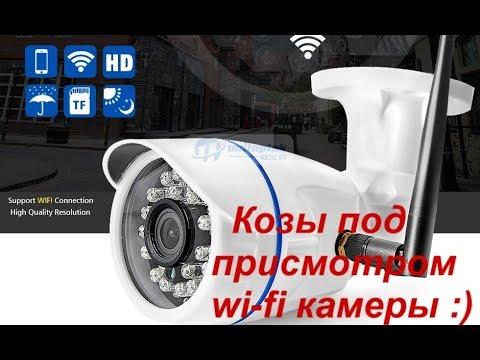 Обзор wi-fi камеры, ее установка и работа