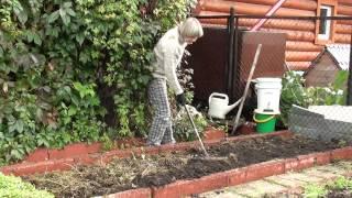 Восстановление плодородия почвы осенью. Часть №1