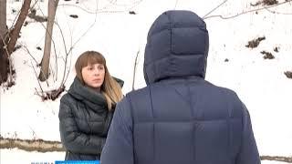 Под Железногорском застрелен медведь-шатун