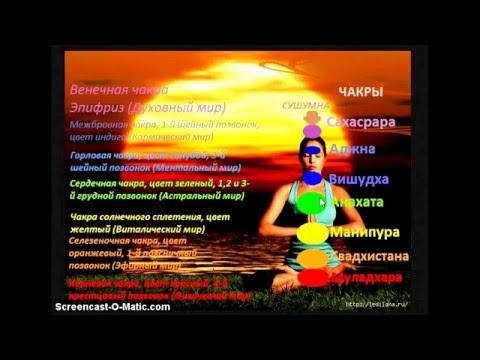 Мир астрологии - индивидуальный гороскоп онлайн бесплатно