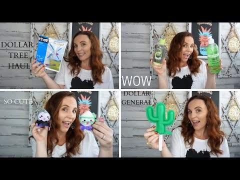 DOLLAR TREE HAUL NEW FINDS | PLUS DOLLAR GENERAL FINDS