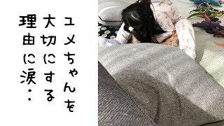 麗禾ちゃん。愛おしいです^^ 市川海老蔵 「色々な思いが‥」麗禾(れいか...