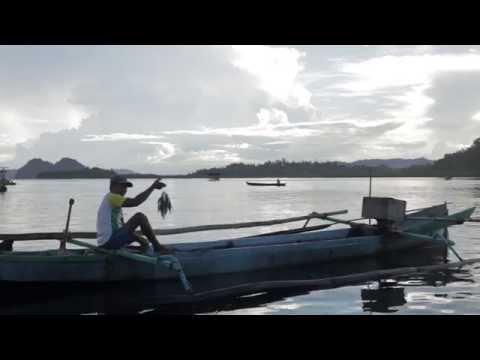 Enter Nusantara Togian Islands, Central Sulawesi