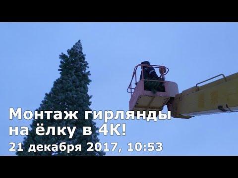 Монтаж гирлянды на анадырскую ёлку в сильный мороз с ветром, 21 декабря 2017, 10:53