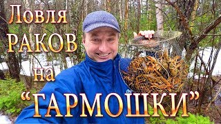 """Весна! Ловля Раков на """"ГАРМОШКИ"""" - Есть БОГ на Свете!!! Отличный Улов!"""