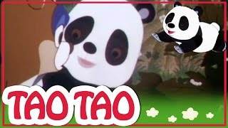 Tao Tao - 33 - עגל מ שמים