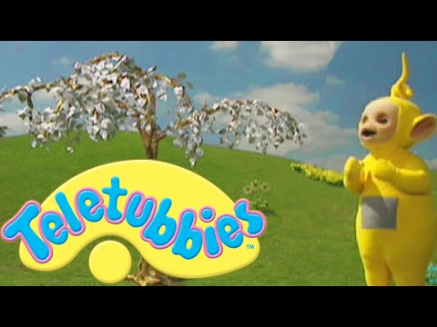 Teletubbies: Gold and Silver - Full Episode