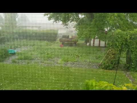 Esterhazy Hail 2