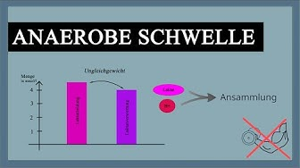 Laktatschwelle - Anaerobe Schwelle einfach erklärt! - Laktatstufentest für wen geeignet?  Laktattest