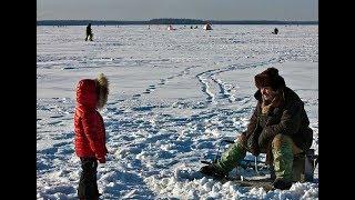 видео Воблеры для зимней рыбалки