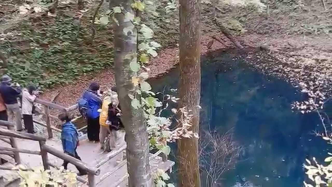 白神山地 十二湖 青池風景 Youtube