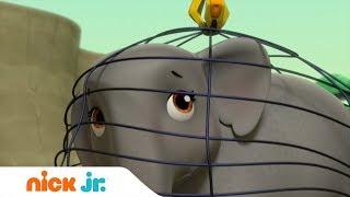 Щенячий патруль | Щенки спасают семью слонов | Nick Jr. Россия