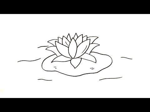 Menggambar Mewarnai Bunga Teratai Lotus Mudah Untuk Anak Youtube