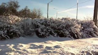 NENSI ✰ Нэнси - Ледяная Сказка в День Рождества!