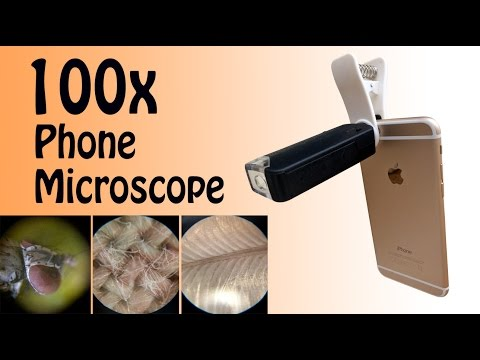 Phone Microscope! 100x magnifying lens review