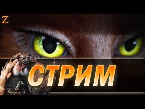 видео: paragon - стрим