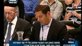 ביני זומר מנהל הפעילות של נובל אנרג י בישראל בדיון בוועדת הכלכלה על מתווה הגז