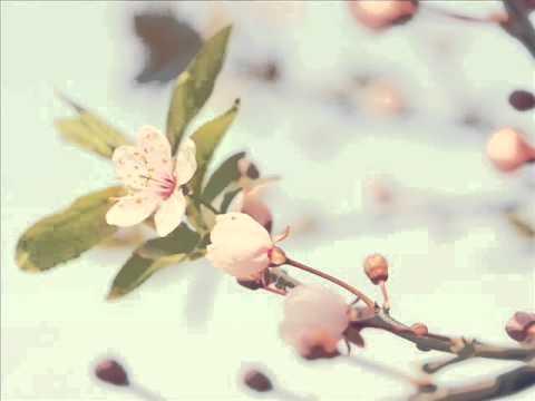 Spring time Yiruma