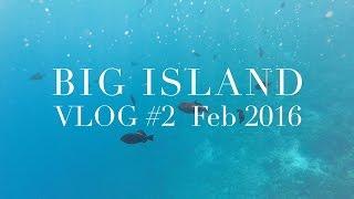 Big Island vlog #2 ☆ ハワイ島に行ってきた!2016 #2