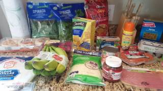 Aldi & Walmart Grocery Haul with Prices 5/18/2016