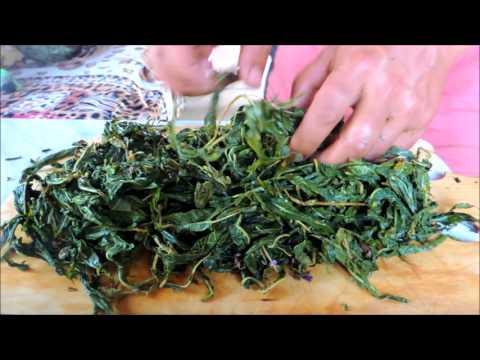 Кипрей узколистный, или цветок иван-чая. Копорский чай