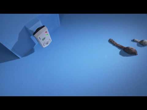 Berömda Musstörare Silverline - Håller råttor och möss borta - YouTube VJ-68