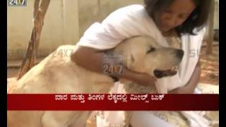 Pets Dabha - Home Made Pet Food Junction Now In Bangalore - Suvarna News