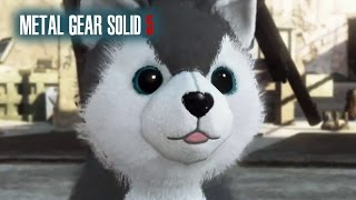 Metal Gear Solid 5 Phantom Pain, DD Diamond Dog Location How To Find, The Cute Puppy Dog