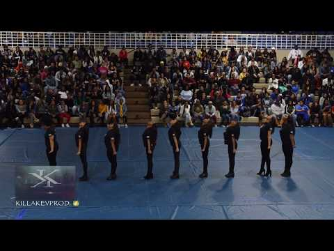 Alpha Kappa Alpha Sorority Inc. (ΑΨ Chapter) - Tennessee State University Yard Show - 2018