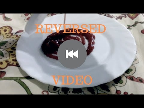 (PART 2) The Most CRAZY Reverse Video Ever! - FireSighter4You