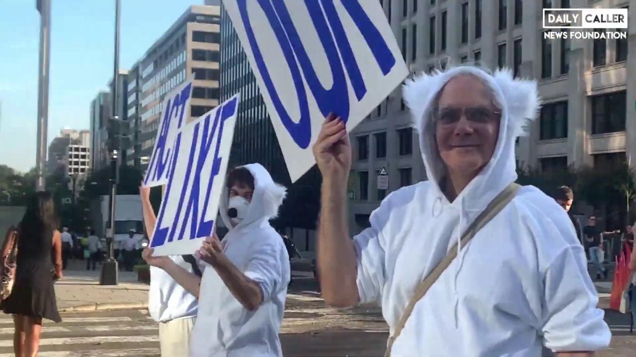 DC Shorts Climate Protesters #ShutDownDC Traffic